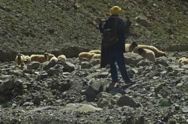 Shepherd in the Atlas Mountains