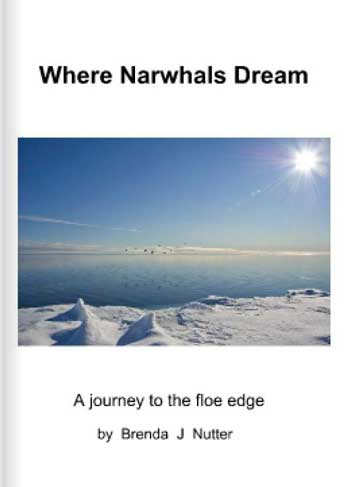 Where Narwhals Dream