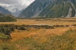 The valley at Mt Cook