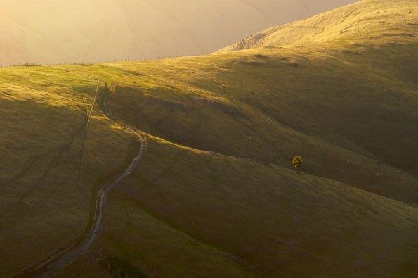 Morning light on the hills of Akaroa