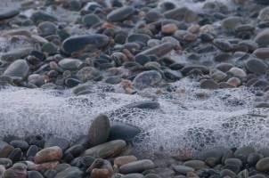 Bubbles, West Coast, South Island