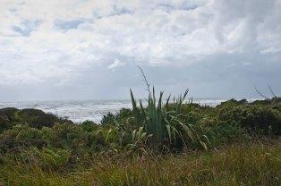 West Coast South Island