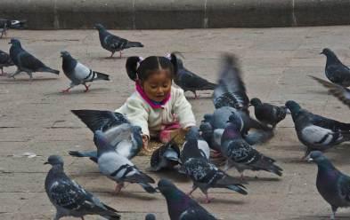 Playing in Plaza de Armas, Cusco