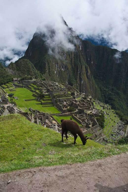 Life at the Top, Machu Picchu