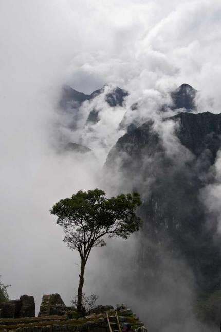 Misty Morning at Machu Picchu