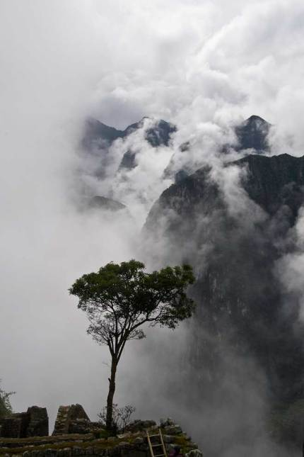 Misty Morning at Machu Picchu