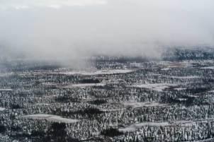 November Tundra