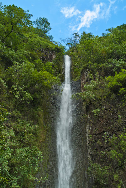 Inland in Tahiti