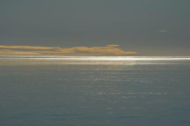 Magic Arctic Light
