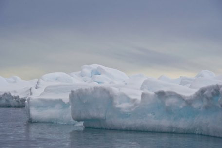 Edge of the Floe