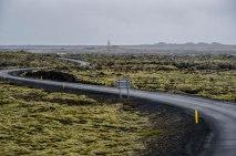 600 year old Lava Fields